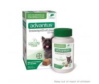 Bayer - Advantus Small Dog Soft Chew 7.5mg 4 - 22 lbs